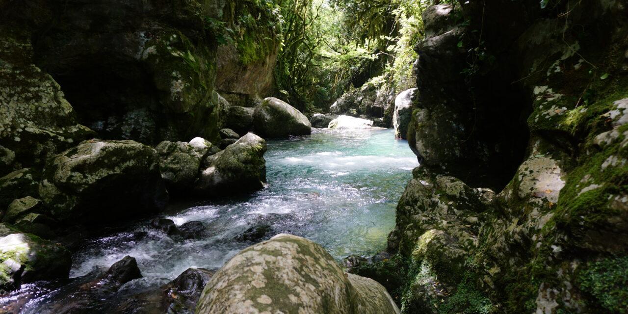 Grotte del Bussento – Oasi Cascate Capelli di Venere – Monte Serralunga
