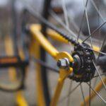 In bici sulla ex ferrovia Lagonegro Spezzano
