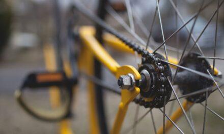In bici al bosco di Cupolicchio