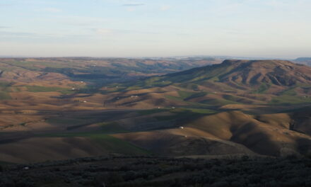 """Da Taccone a Monteserico """"I paesaggi del grano"""""""