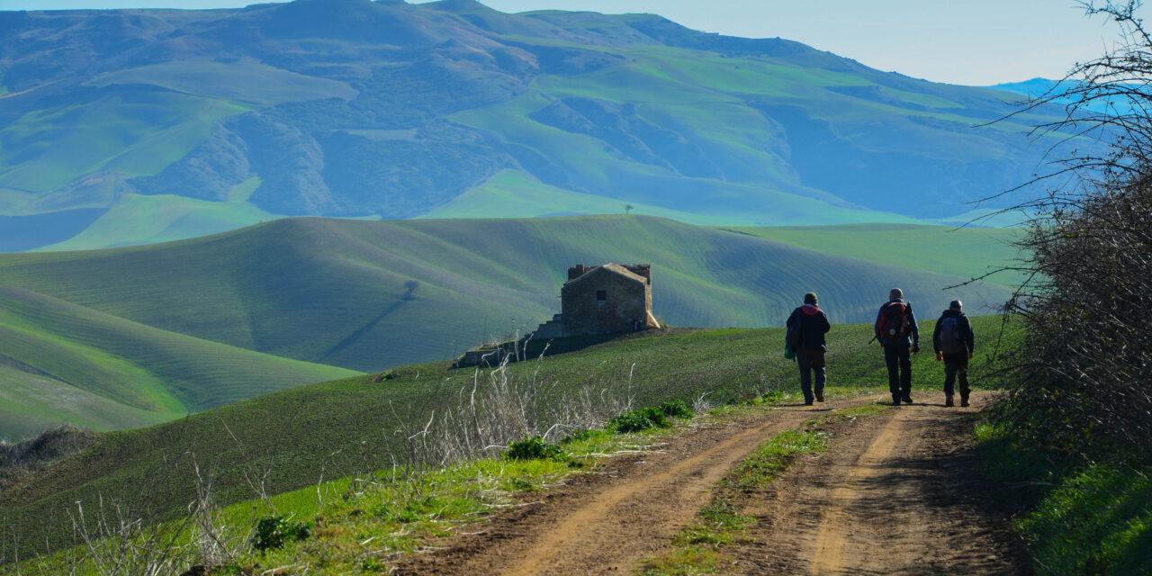 La campagna di Genzano di Lucania – Monte Serico