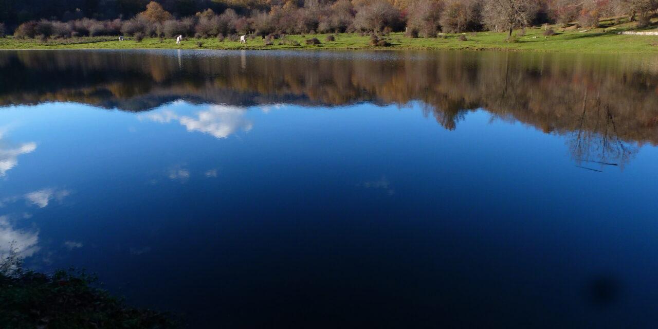 L'incanto del bosco: da Piana del Lago a Rifugio Romanelli