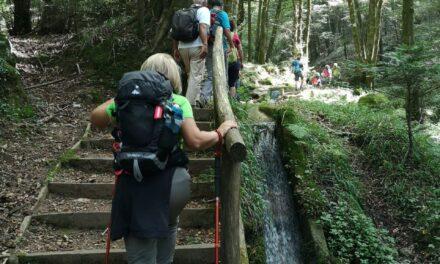 Parco Naturale Regionale delle Serre: Serra San Bruno