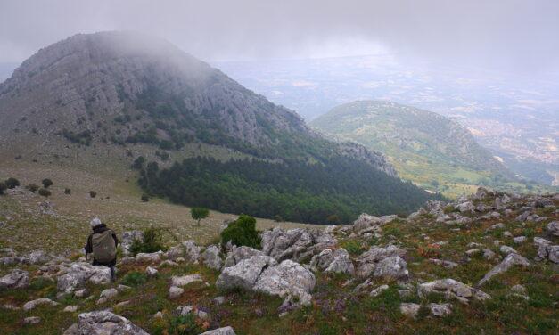 Monte Sellaro